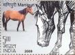 Postage Stamp on Indigenous Horses Of India Manipuri