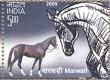 Postage Stamp on Indigenous Horses Of India Marwari