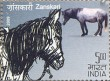 Indian Postage Stamp on Indigenous Horses Of India
