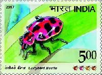 Postage Stamp on Ladybird Beetle