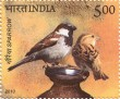 Postage Stamp on Sparrow
