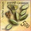 Postage Stamp on Spices Of India