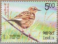 Postage Stamp on Vulnerable Birds