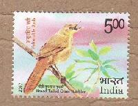 Indian Postage Stamp on Vulnerable Birds