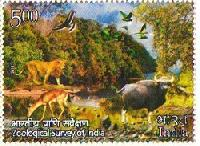 Indian Postage Stamp on Zoological Survey of India (ZSI)